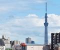 平成29年度東京都予算に対する要望活動の実施の画像